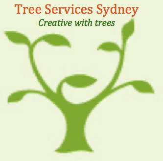 Tree Services Sydney | Tree Removals | Tree Pruning | Tree Mulching
